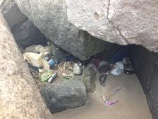 """""""Nidos de basuras en el dique sur"""