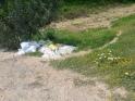 escombros 4