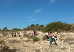 plantación 20-12-2015 (2)