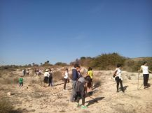 plantación 20-12-2015 (9)