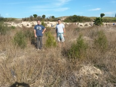 plantación antigua (2)