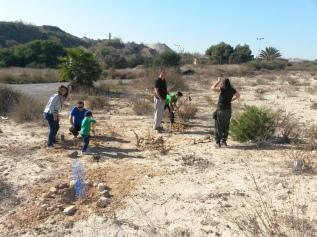 plantación 20-12-2015 (4)