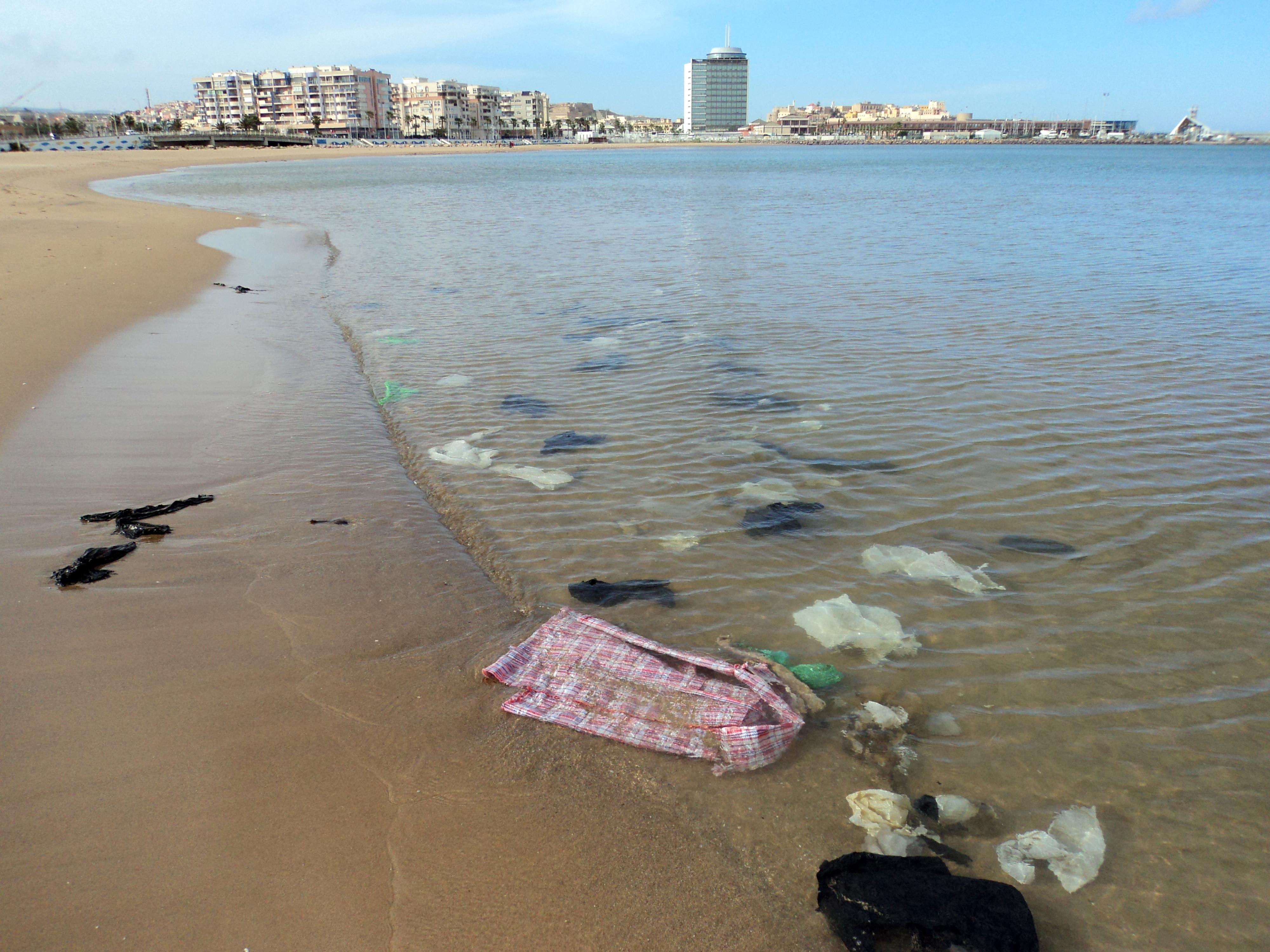basura playa 2