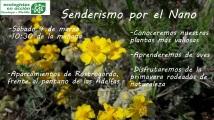 cartel-jarilla-2