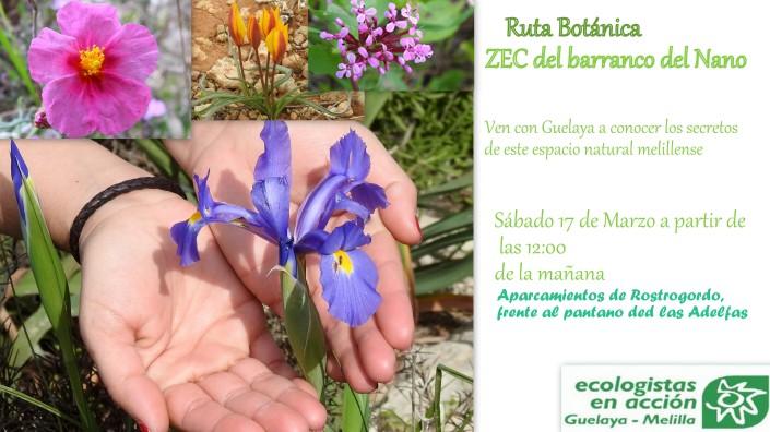 cartel ruta botánica