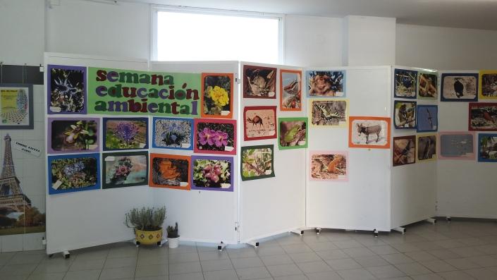 expo 2