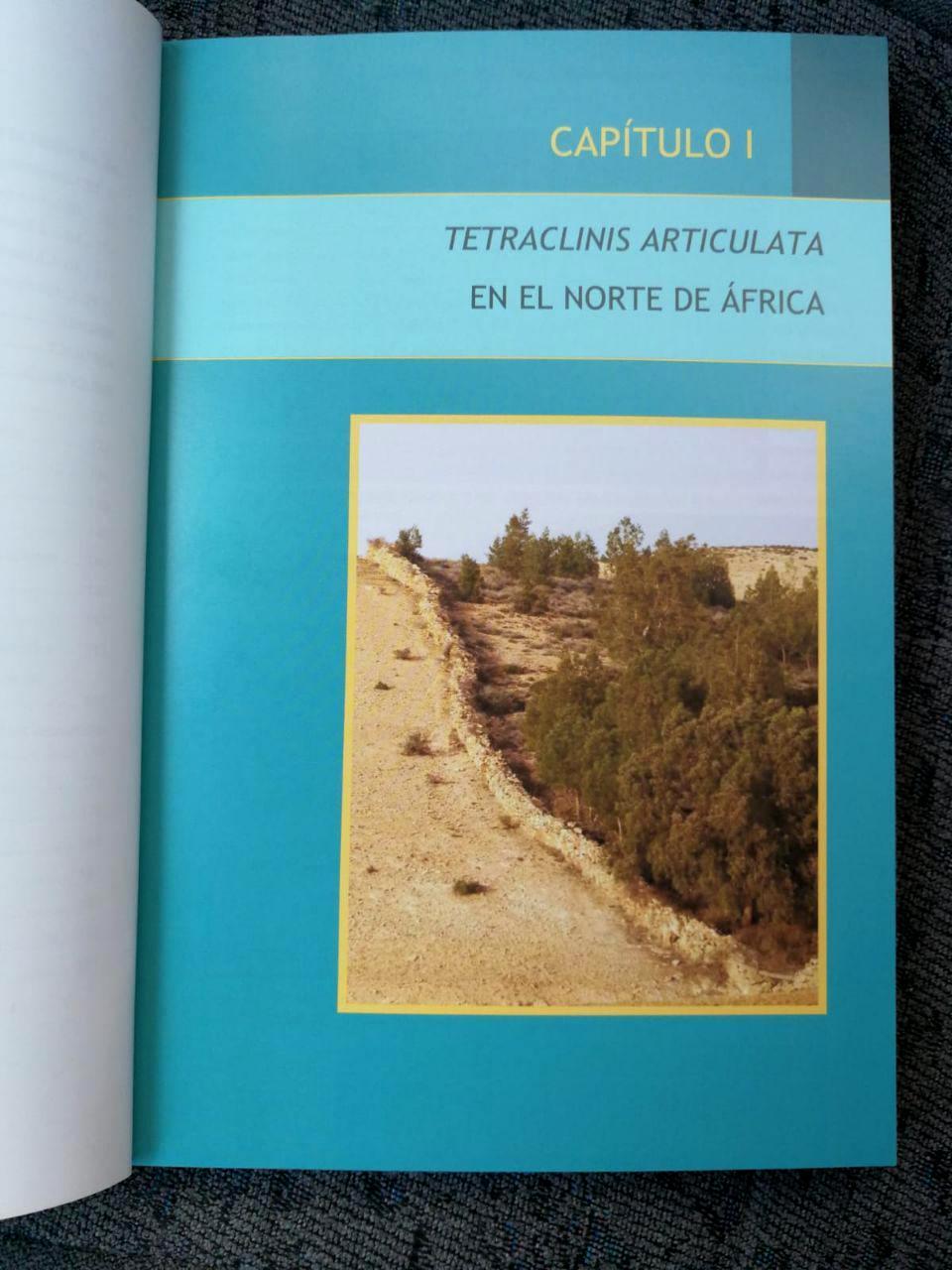 libro tetraclinis 3