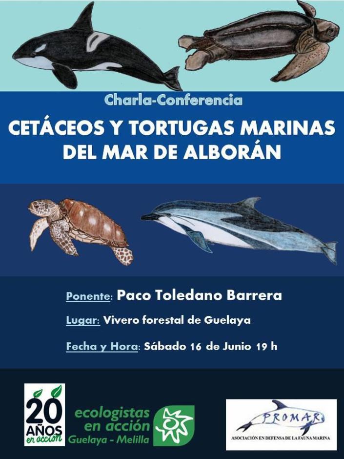 cartel cetaceos