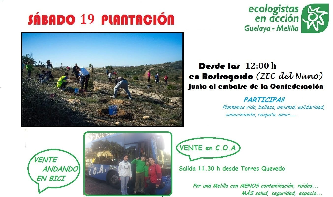 cartel reforestacion 19 enero