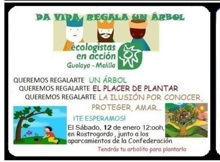 cartel reforestacion solidaria 2019