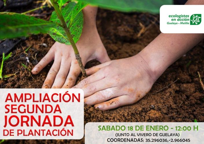 cartel reforestacion 18 enero