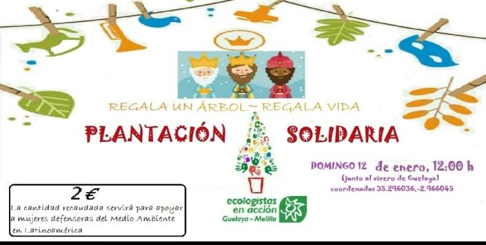 cartel reforestacion solidaria