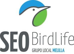 logo SEO Melilla