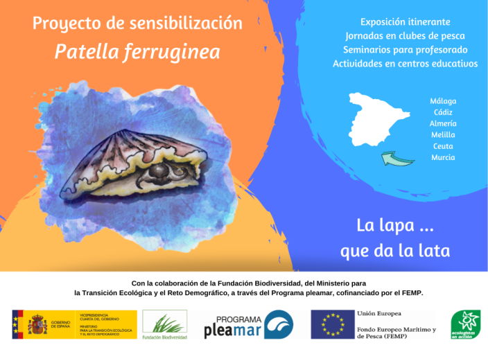 cartel proyecto Patella
